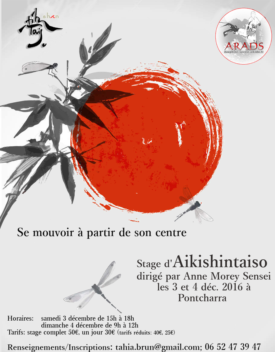 stage-aikishintaiso-decembre-2016-1